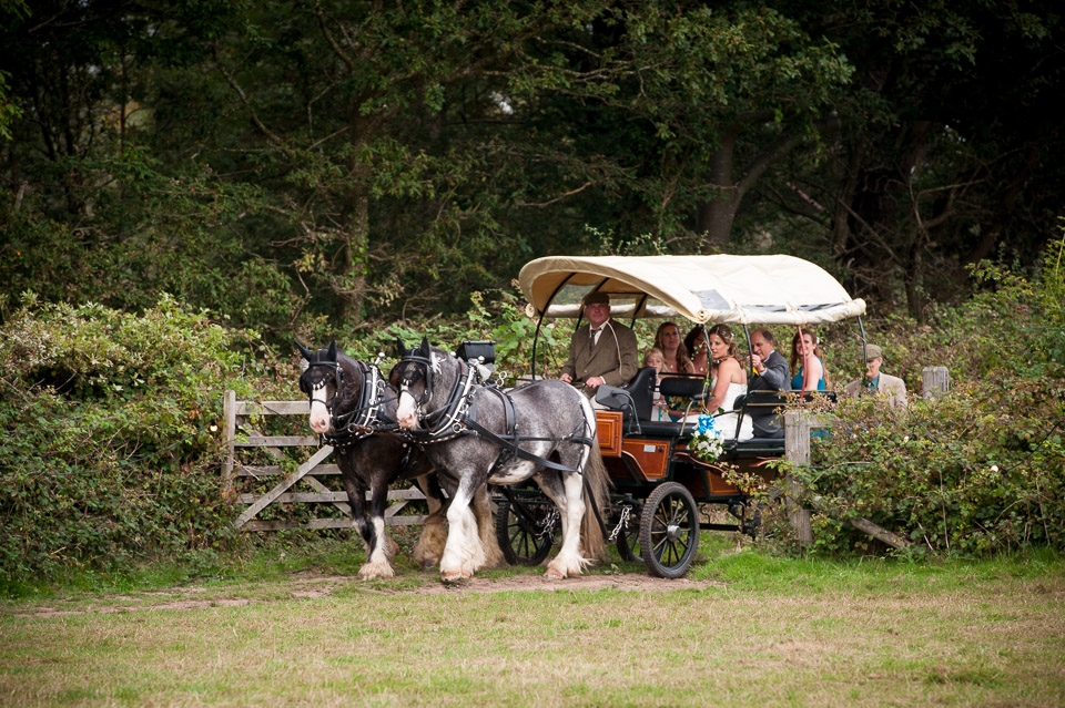 Arriving at her wedding in the New Forest by rustic horse carriage