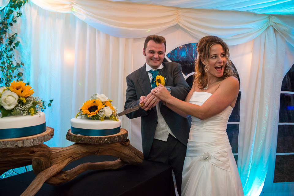 Cutting the cake at their New Forest wedding
